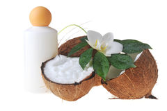 olio di massaggio della noce di cocco Immagine Stock Libera da Diritti