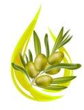 Olio di oliva. illustrazione di stock