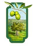 Olio di oliva royalty illustrazione gratis