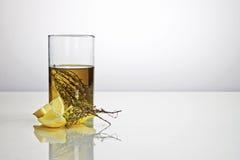 Olio di oliva condetto Fotografia Stock
