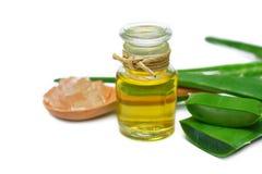 Olio di vera dell'aloe in bottiglia di vetro Fotografie Stock
