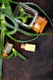 Olio di vera dell'aloe in bottiglia di vetro ed asciugamano per la stazione termale Immagine Stock Libera da Diritti