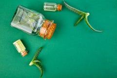 Olio di vera dell'aloe in bottiglia di vetro ed asciugamano per la stazione termale Fotografia Stock Libera da Diritti