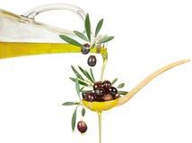 Olio ed olive di oliva Immagine Stock Libera da Diritti
