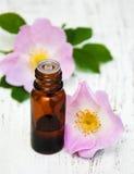 Olio essenziale in bottiglia di vetro Fotografia Stock Libera da Diritti