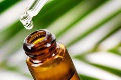 Olio essenziale che cade dalla pipetta alla bottiglia fotografia stock libera da diritti