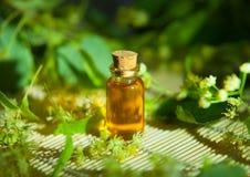 Olio essenziale del tiglio in bella bottiglia sulla tavola Fotografia Stock Libera da Diritti
