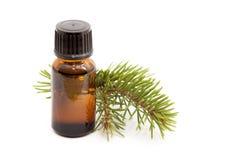 Olio essenziale dell'abete cosmetico Fotografia Stock