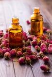 Olio essenziale dell'aroma Fotografia Stock