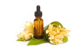 Olio essenziale dell'aroma con il fiore di champaka Fotografia Stock