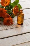 Olio essenziale dell'aroma dalla calendula Immagini Stock Libere da Diritti