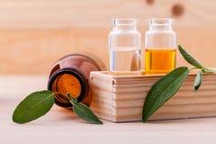 Olio essenziale della stazione termale della salvia naturale degli ingredienti Fotografia Stock
