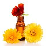 Olio essenziale di Aromatherapy con il tagete fotografie stock