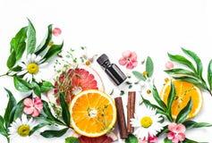 Olio essenziale per la pelle di bellezza Ingredienti piani di bellezza di disposizione su un fondo leggero, vista superiore Conce fotografie stock