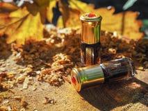 Olio fragrante Olio profumato Piccola bottiglia di Attar arabo fotografia stock libera da diritti