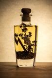 Olio vegetale con le spezie in una bottiglia Fotografia Stock