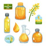 olio vegetale Luminoso-giallo in bottiglie di varie forme, goccia del fiore del seme di ravizzone, delle etichette liquide e marc illustrazione vettoriale