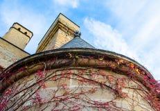 Olite城堡的完善的锥体,做由底部冠上,与红有颜色的常春藤在它的墙壁附近,留出文本的空间在sk 免版税图库摄影