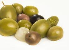 Oliv Arkivbilder