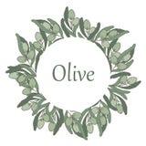 Oliv i en cirkelram stock illustrationer