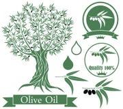 oliva illustrazione vettoriale