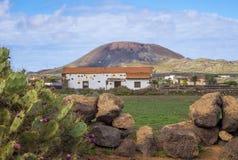 Oliva Fuerteventura Las Palmas Canary för kaktus- och bergsiktsLa öar Spanien Royaltyfria Foton
