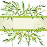 Olive. Olive and olive tree branches with empty copyspace. Isolated stock illustration