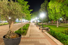 Olive alley in the night Pomorie in Bulgaria stock photo