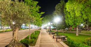 Olive alley in the night Pomorie, Bulgaria Stock Images