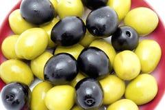 Olive background Stock Image