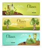 Olive Banners Set illustration de vecteur
