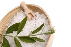 Olive bath Stock Photo