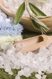 Olive bath Stock Photos