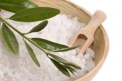 Olive bath items. alternative Stock Photography
