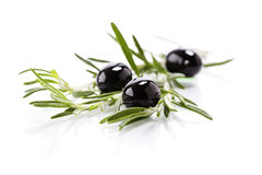 Olive branch Royalty Free Stock Photo