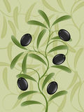 Olive branch. Background with an olive branch. Vector illustration royalty free illustration