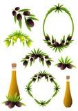 Olive branch vector illustration