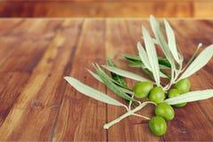 Olive Branch Imagen de archivo libre de regalías