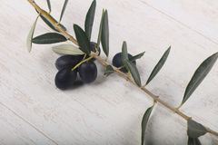 Olive branch. With berries over wooden background Stock Photos