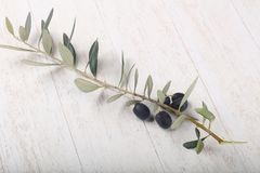 Olive branch. With berries over wooden background Royalty Free Stock Photos