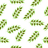 Olive branch with berry and leaf diet plant in color, seamless pattern Stock Images