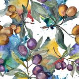Olive branch with black and green fruit. Watercolor background illustration set. Seamless background pattern. stock illustration