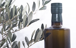 Olive branch and a bottle of olive oil Royalty Free Stock Image