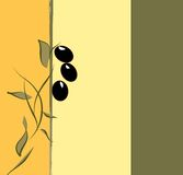 Olive branch floral background Royalty Free Stock Image