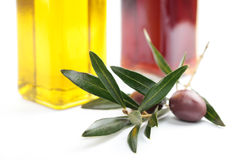 Olive branch with fruit Royalty Free Stock Images