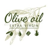 Olive branch with logo Stock Photo