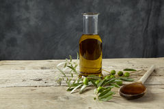 Olive branch and olive oil Royalty Free Stock Images