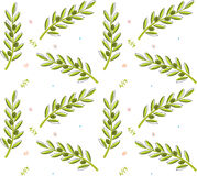 Olive Branch Pattern Imagem de Stock Royalty Free
