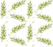 Olive Branch Pattern Immagine Stock Libera da Diritti