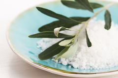 Olive branch with sea salt Royalty Free Stock Images